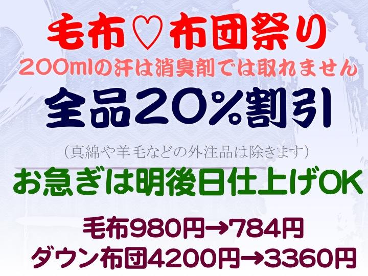 今週のお花&セール情報_a0200423_19271749.jpg