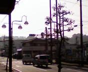 f0164669_188312.jpg
