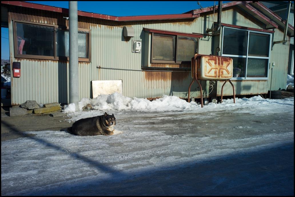 寒い寒い冬晴れの白糠1_f0042194_0165673.jpg
