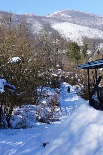 お友達と雪遊び_f0106597_123301.jpg