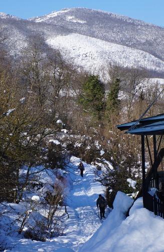 お友達と雪遊び_f0106597_126196.jpg
