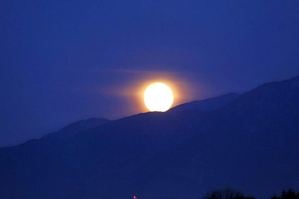 待ちに待った瞬間(アリスイがネコヤナギに)幻想的な色の月没/つるし雛/居待ち月_b0024798_218564.jpg