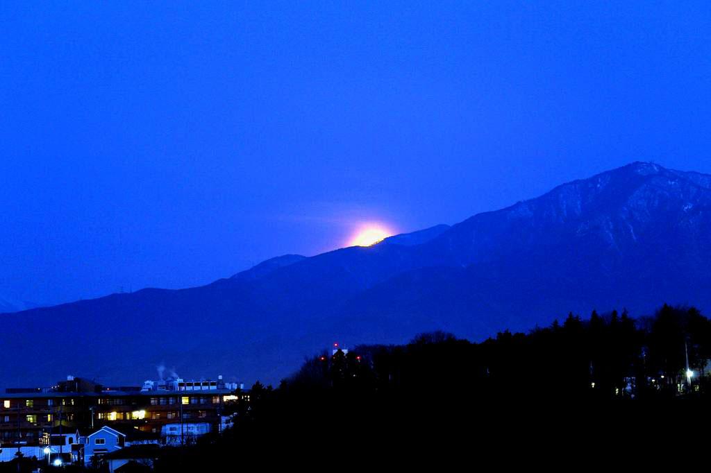 待ちに待った瞬間(アリスイがネコヤナギに)幻想的な色の月没/つるし雛/居待ち月_b0024798_2191422.jpg
