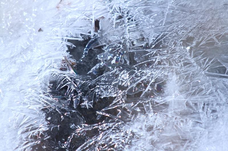 矢け崎川の氷_f0091207_21332261.jpg