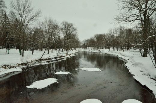 2013年2月28日(木):氷は緩むが雪は降る[中標津町郷土館]_e0062415_22153830.jpg