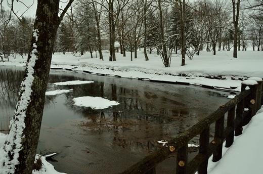2013年2月28日(木):氷は緩むが雪は降る[中標津町郷土館]_e0062415_22162593.jpg