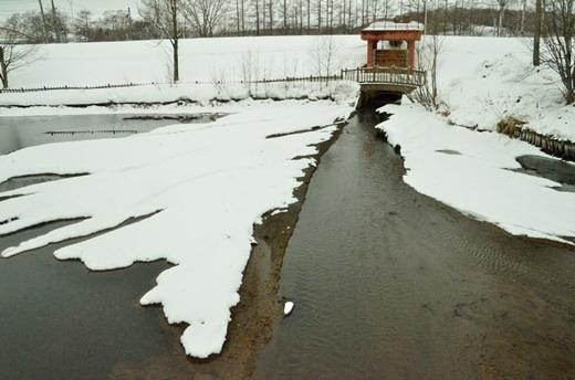 2013年2月28日(木):氷は緩むが雪は降る[中標津町郷土館]_e0062415_2218973.jpg