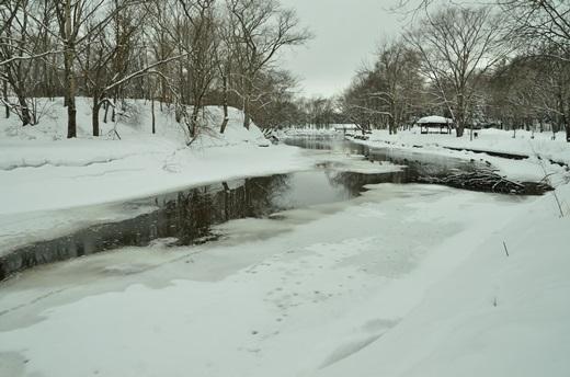 2013年2月28日(木):氷は緩むが雪は降る[中標津町郷土館]_e0062415_22232752.jpg