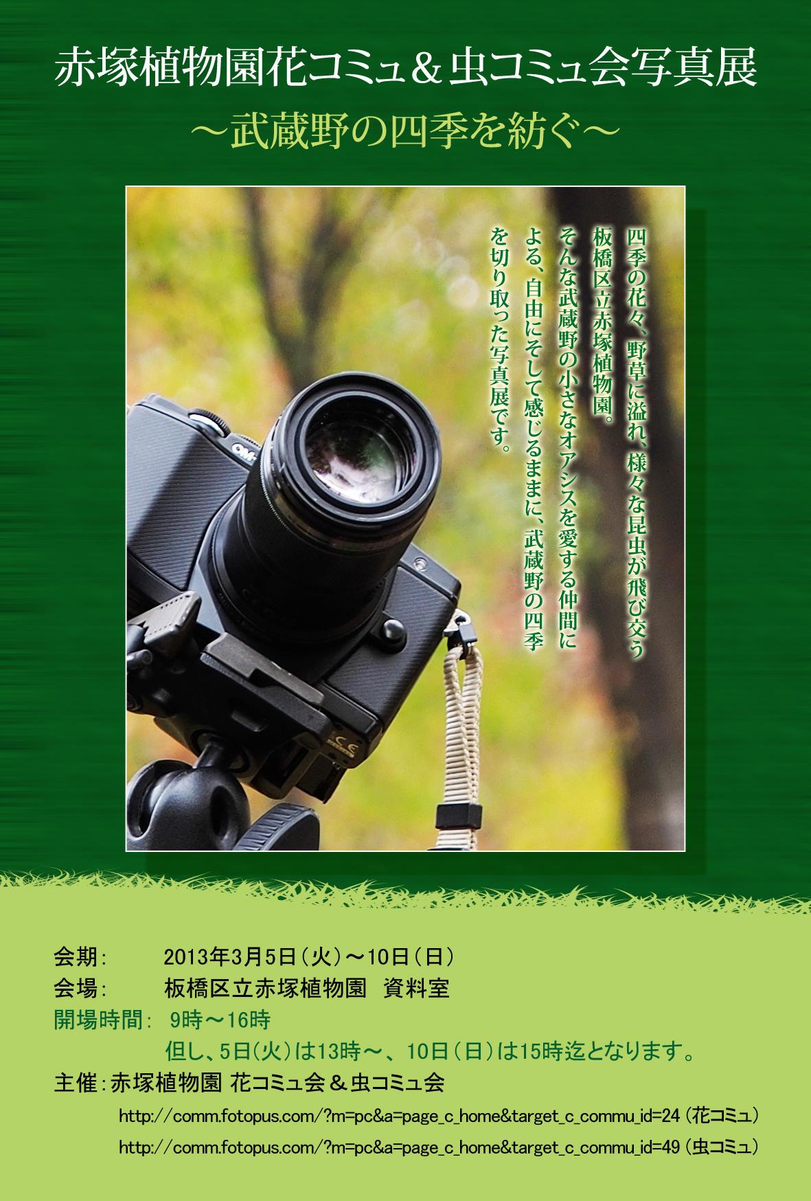 赤塚植物園写真展_d0192516_10585162.jpg