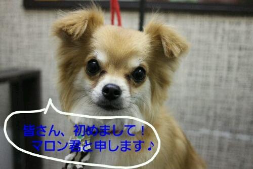 こんばんは!!!_b0130018_21503170.jpg