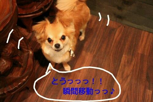 こんばんは!!!_b0130018_21514038.jpg