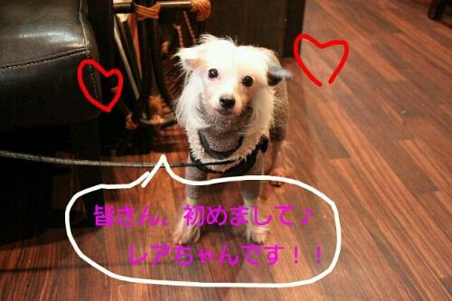 こんばんは!!!_b0130018_21525474.jpg