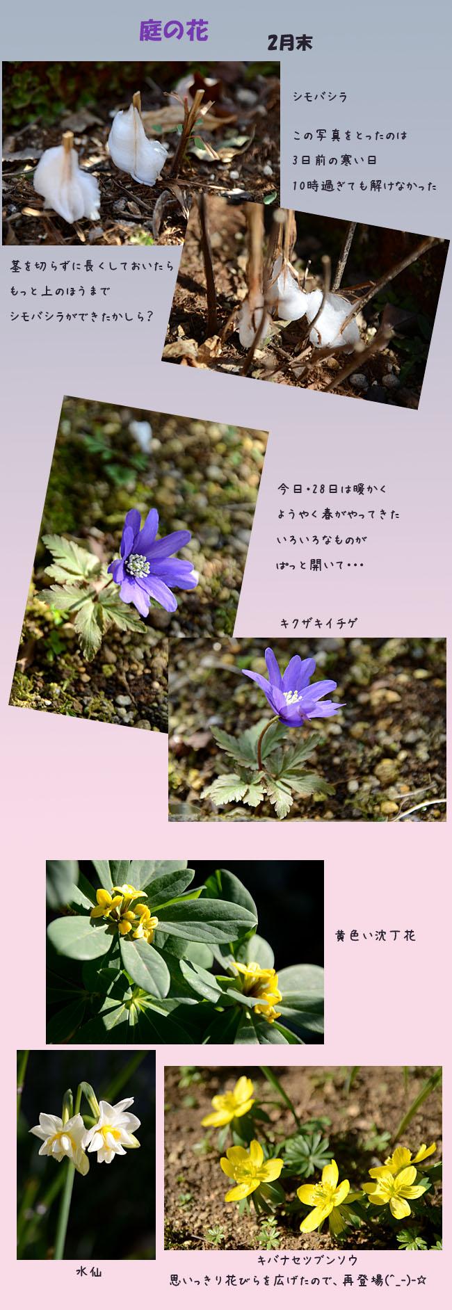 e0020954_1558281.jpg