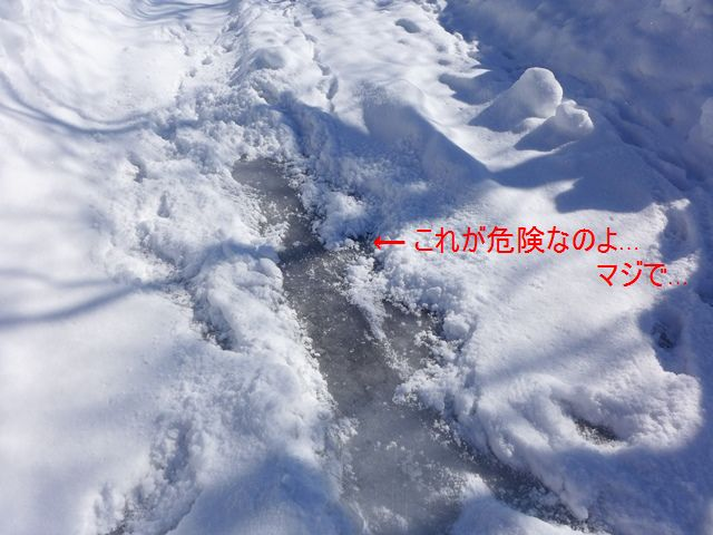 c0134862_184958.jpg