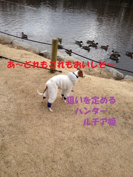 f0223972_6512587.jpg