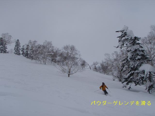 f0100885_22562774.jpg