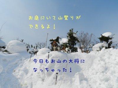 f0205887_1624021.jpg