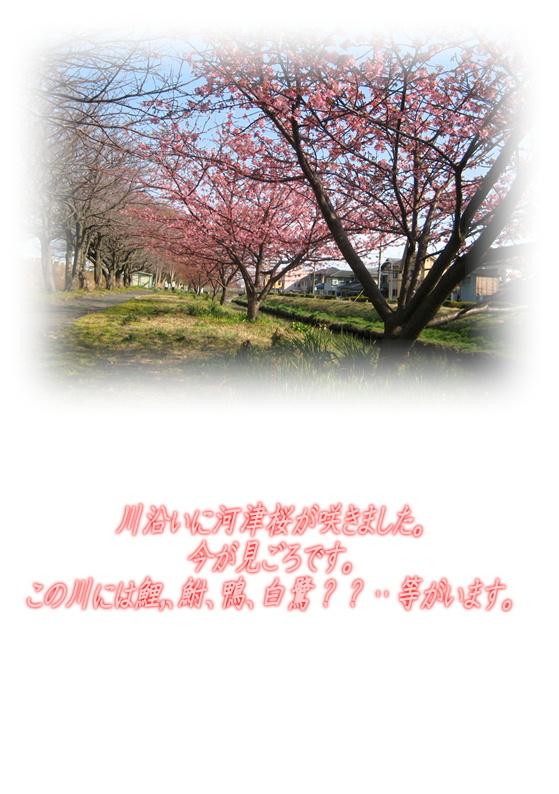 e0255638_1755116.jpg