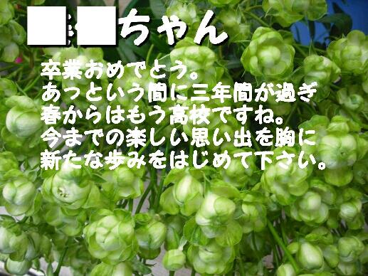 b0253057_6405666.jpg