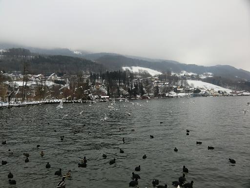 冬の風景_f0226671_4234470.jpg