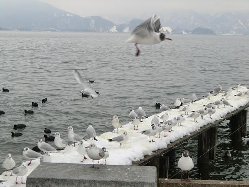 冬の風景_f0226671_426791.jpg
