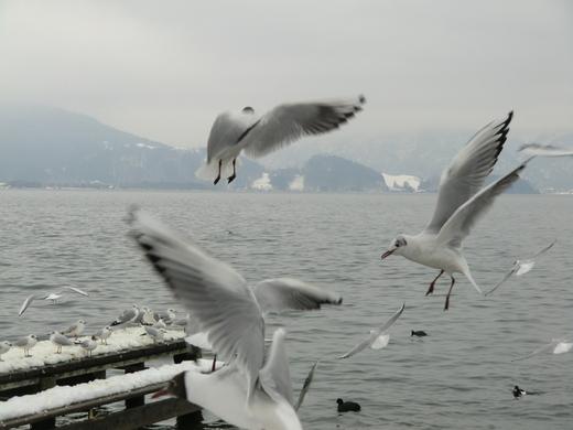 冬の風景_f0226671_4274792.jpg