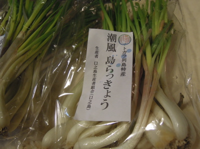 沖縄好き_f0232994_2483774.jpg