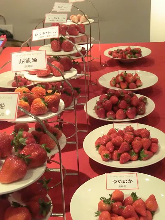 東京国際苺博覧会・苺大好き_c0125702_21323895.jpg