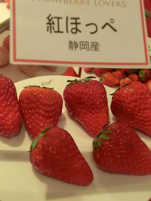 東京国際苺博覧会・苺大好き_c0125702_21361712.jpg