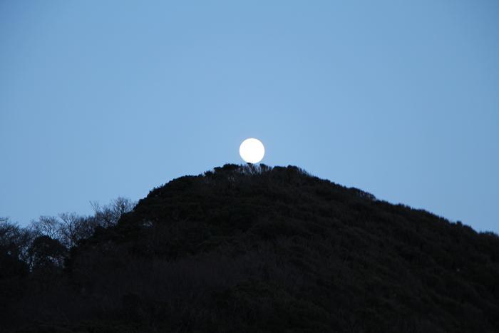 早春の秋谷海岸  (2)_d0150720_715471.jpg