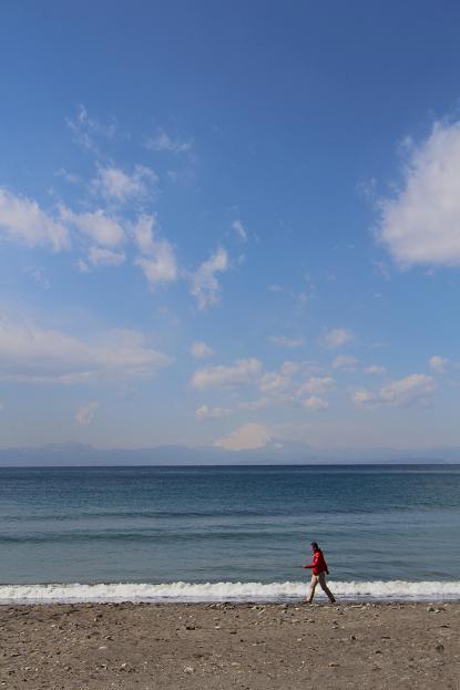 早春の秋谷海岸  (2)_d0150720_79581.jpg