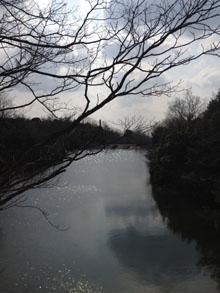春の散歩_e0103024_2122086.jpg