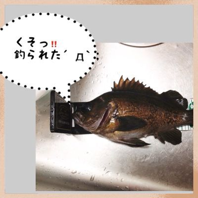 c0184827_16341418.jpg