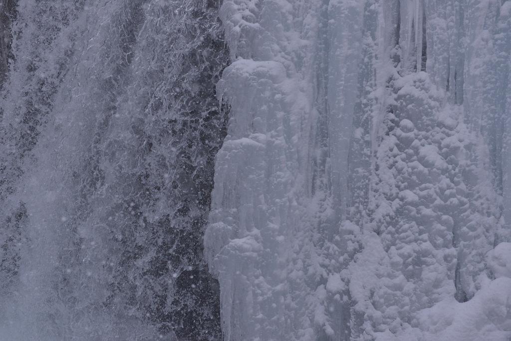氷塊雪中図_f0050534_16211354.jpg