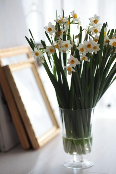 お部屋にかぐわしい香りをどうぞ。_a0227137_2156530.jpg