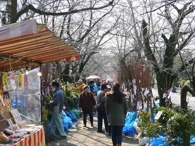 春の訪れを告げる「きくち初市」 その1_a0254656_1746011.jpg
