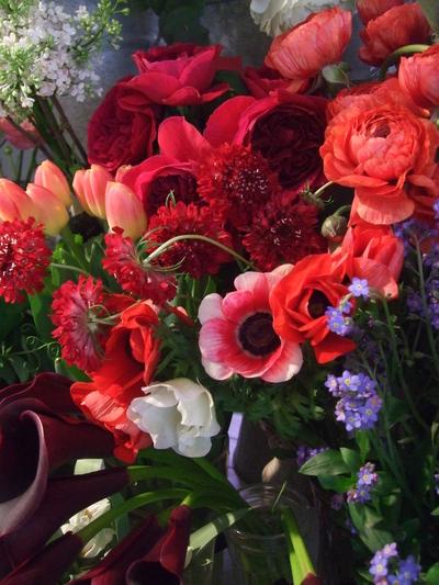 オークリーフ(赤い花)_f0049672_1220961.jpg
