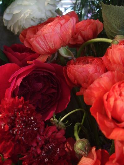 オークリーフ(赤い花)_f0049672_12221647.jpg