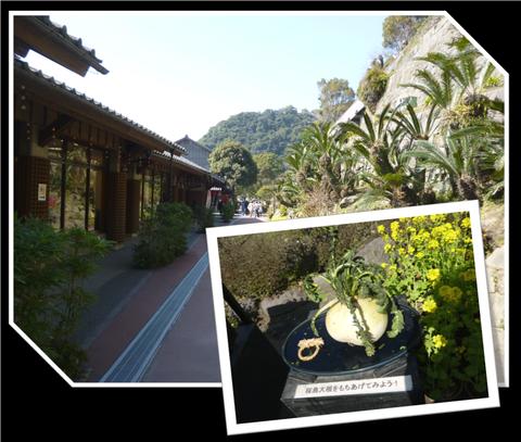 仙巌園♪_b0228113_1834077.png