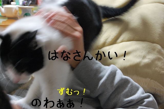 c0181639_22194850.jpg