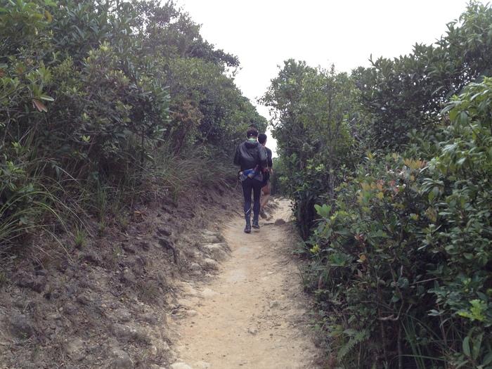 2013.2.22-25 香港trip(+trail) day3 ホンコントレイルsec.8_b0219778_1949356.jpg