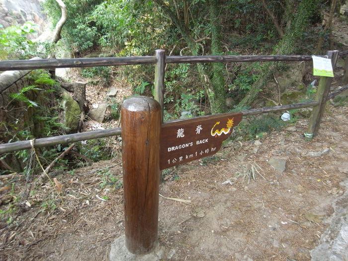 2013.2.22-25 香港trip(+trail) day3 ホンコントレイルsec.8_b0219778_20144934.jpg