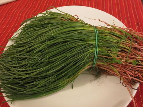 春一番!!そして春を告げる野菜が登場!!_c0179785_77485.jpg
