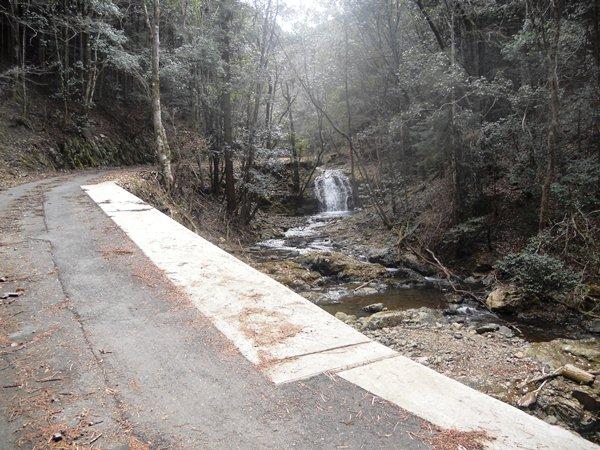 「白水の滝」へのハイキングから国有林を考える_f0221707_21124894.jpg
