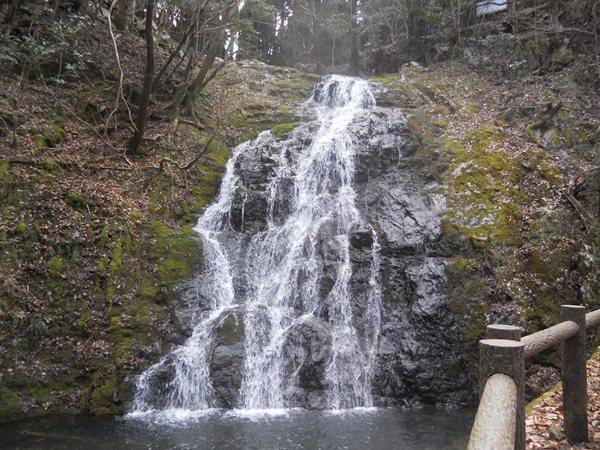 「白水の滝」へのハイキングから国有林を考える_f0221707_21132080.jpg