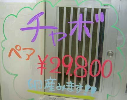 f0153164_22152453.jpg