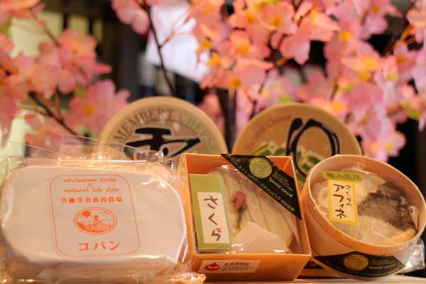 北海道から、春のたよりが届きました♪_b0016474_12195152.jpg