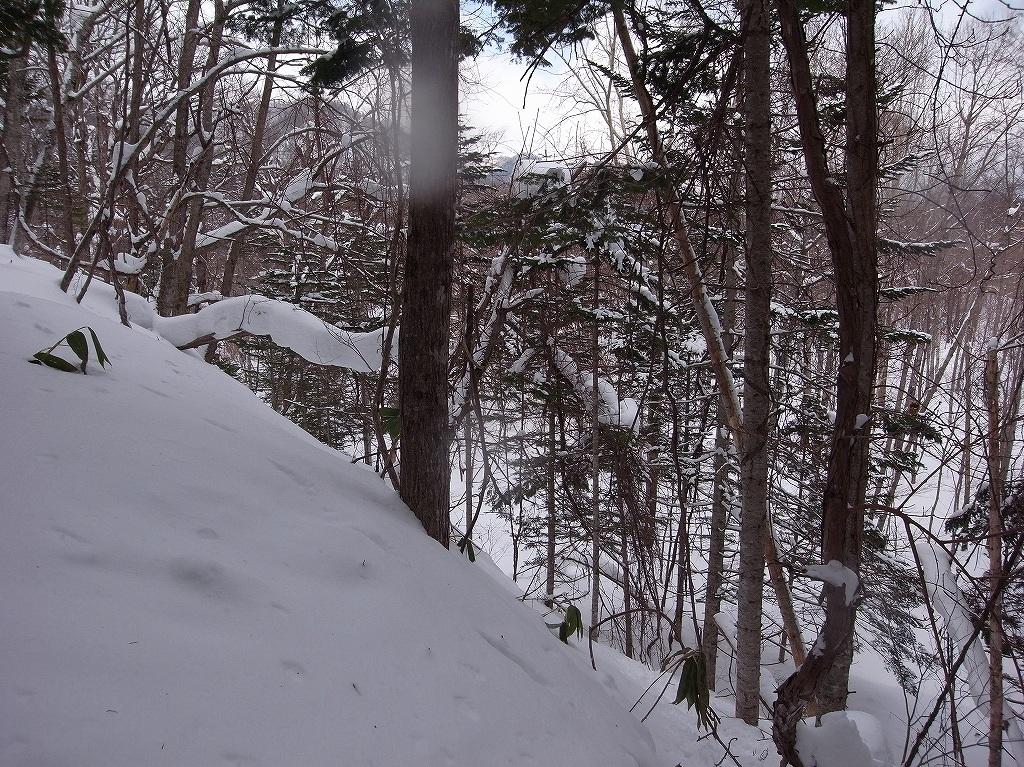 3月4日、美笛トンネル上の尾根歩き_f0138096_23232021.jpg