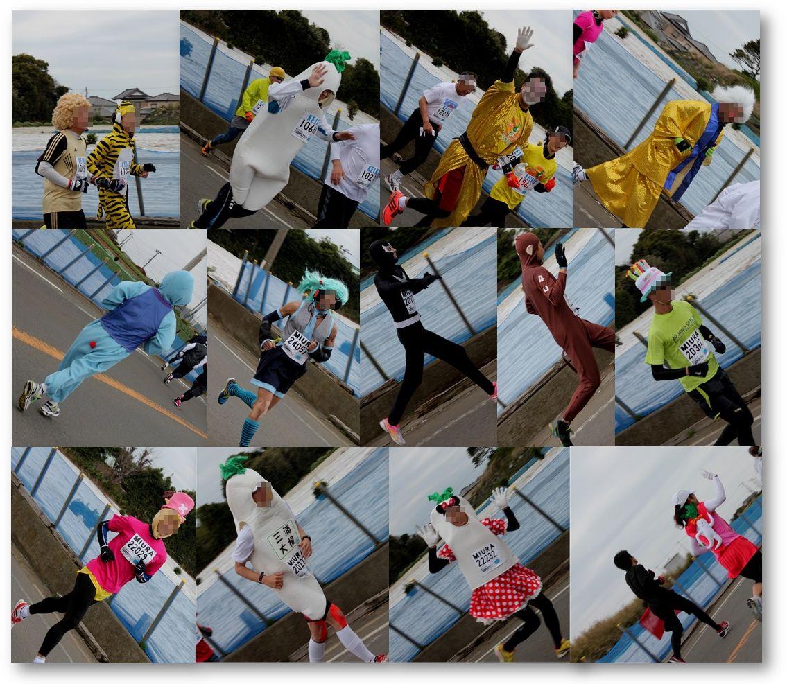 三浦国際市民マラソン_a0161111_23483068.jpg