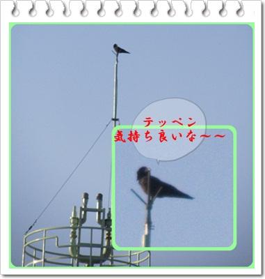 b0149071_20235177.jpg